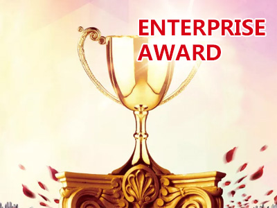 Enterprise Award